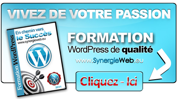 Formation WordPress Excellente :-)