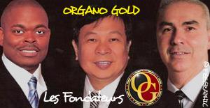Fondateur Organo Gold :-)